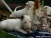 Ingrid und Bullibabies