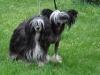Minnie und Pia